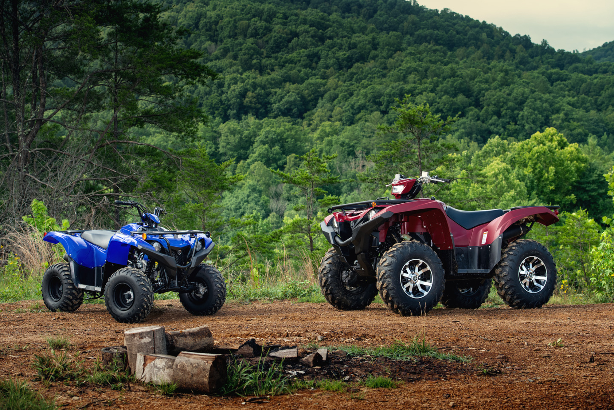 2019 Yamaha Grizzly Family