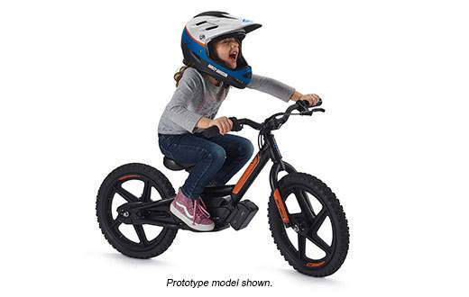 Harley-Davidson eBike Models 2