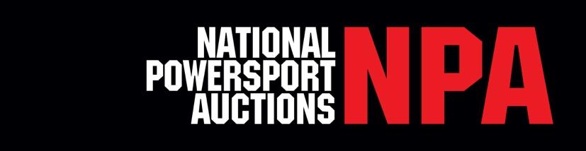 2019 NPA Logo