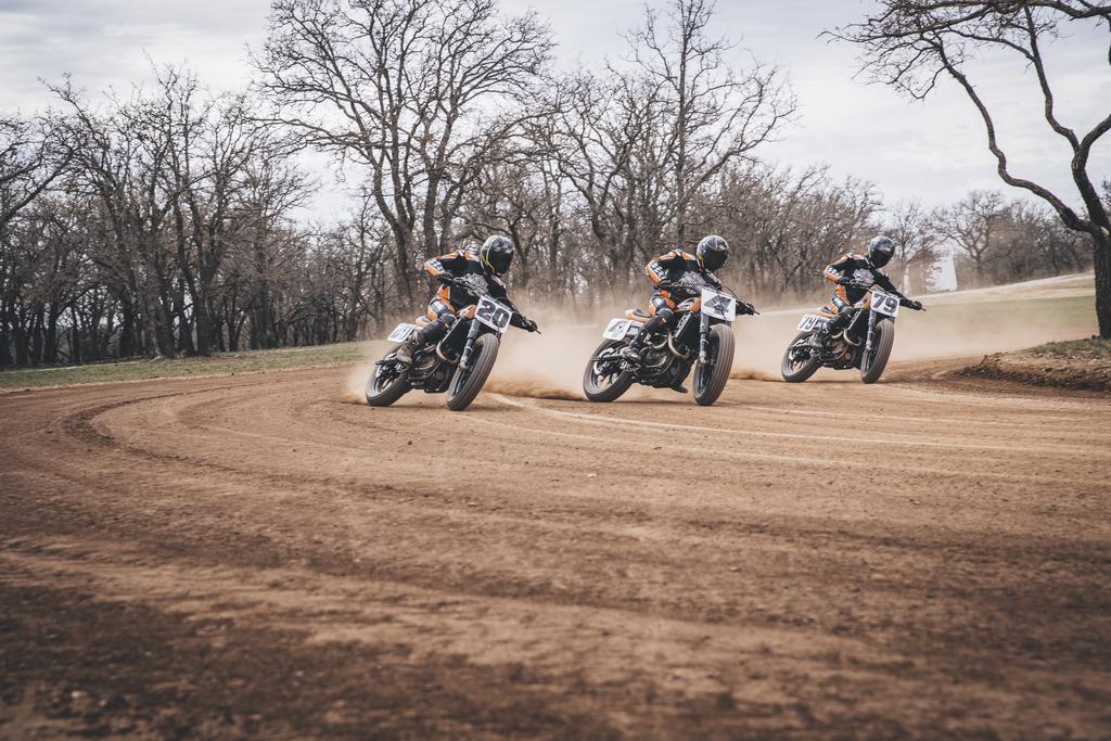 Harley-Davidson Factory Flat Track Team [2]