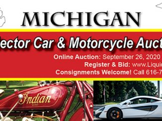 MI collectors auctions (678)