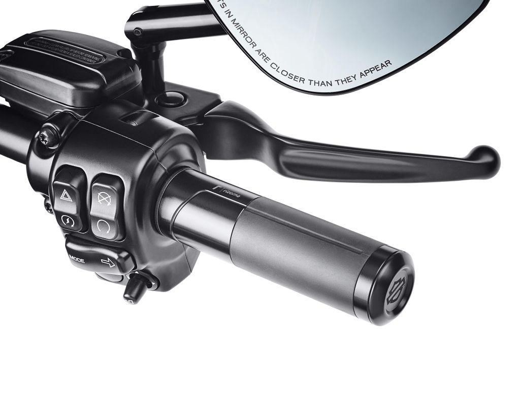 200904 Harley-Davidson by Rizoma Grips (1)