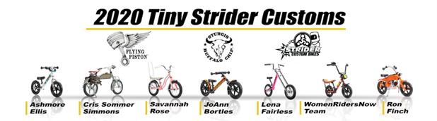 2020 Tiny Strider Customs