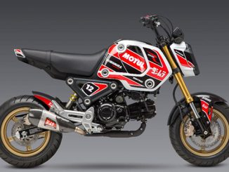 210602 2022 Grom Decal Kit (678)