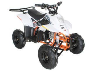 210603 Recalled EGL Motor ACE D110 Youth ATV (678)