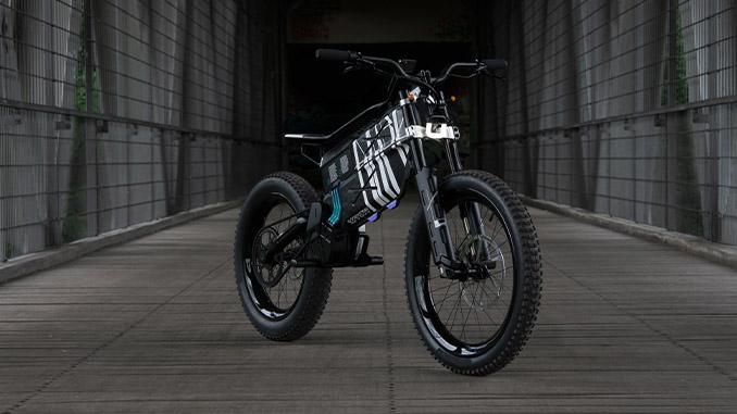 BMW Motorrad Vision AMBY (678)